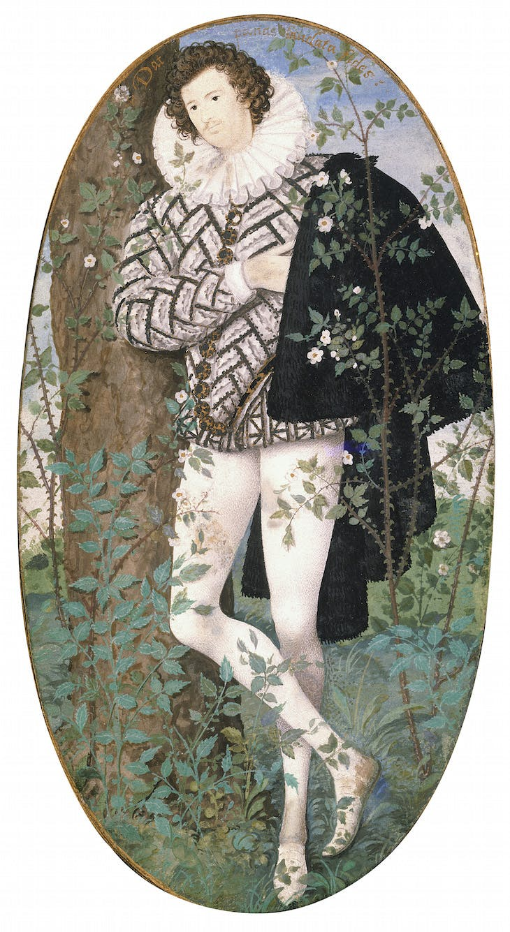 Young Man among Roses, Hilliard