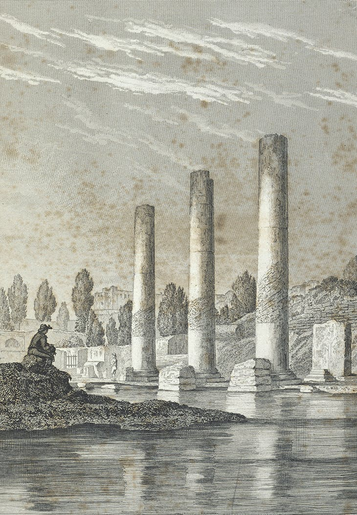 Frontispiece (detail) of Charles Lyell's 'Principles of Geology' (1830), featuring an engraving of the Temple of Serapis, Pozzuoli, from 1820 by Andrea de Jorio. Natural History Museum, London.
