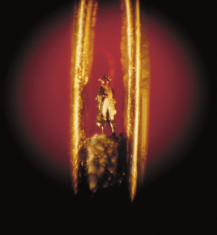 A microminiature sculpture of Napoleon in the eye of a needle by Hagop Sandaldjian.