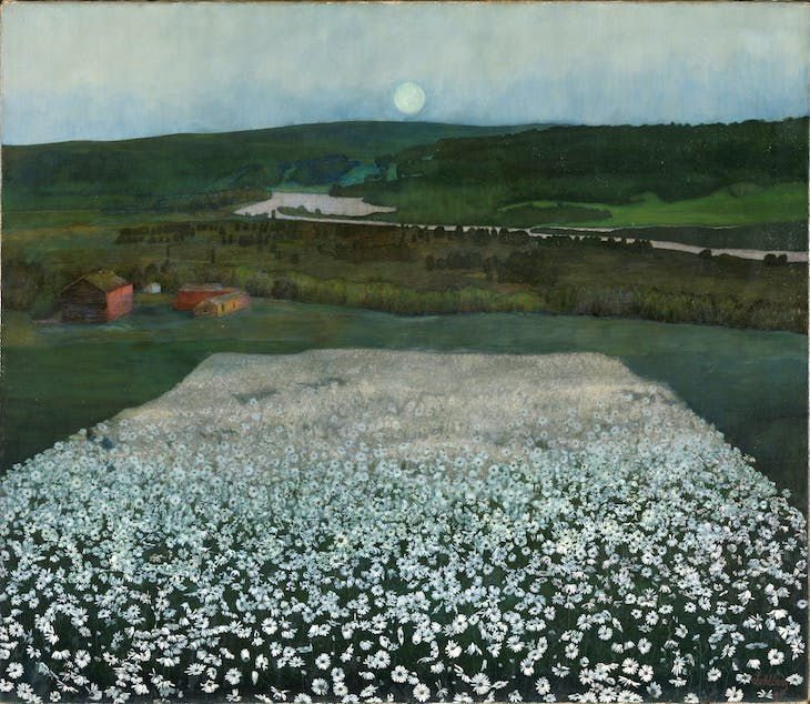 Flower Meadow in the North, Sohlberg