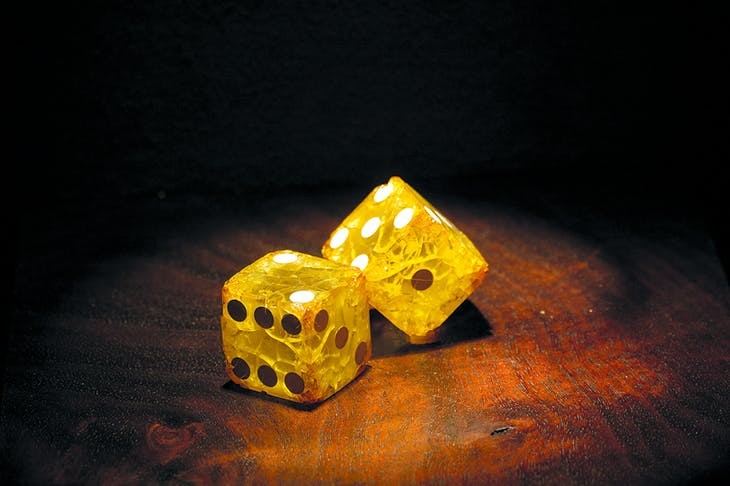 Detail of 'Rotten Luck – An Exhibit of Failing Dice' from the Collections of Ricky Jay, at the Museum of Jurassic Technology, Los Angeles