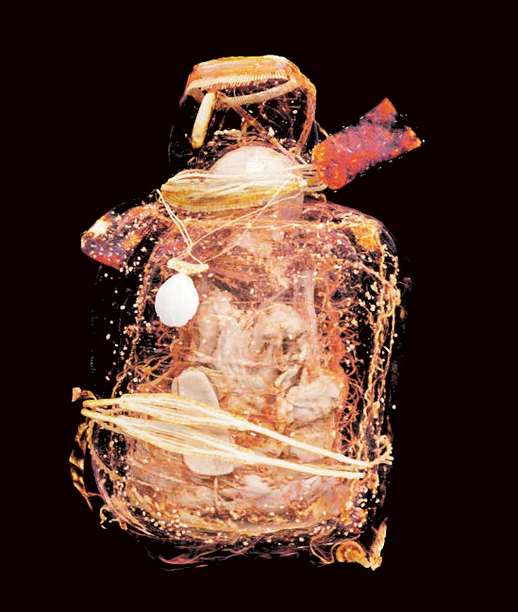 A 3D-reconstructed image of the mummy inside the Incan mummy bundle (above).