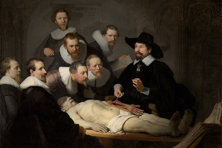 The Anatomy Lesson of Dr Nicolaes Tulp (detail; 1632), Rembrandt Van Rijn. Mauritshuis, The Hague.