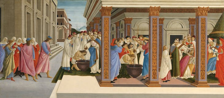 Four Scenes from the Early Life of Zenobius, Botticelli
