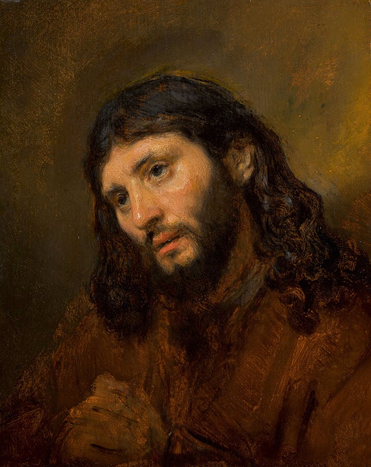 Head of a young man, with clasped hands: Study of the figure of Christ (c. 1648–56), Rembrandt van Rijn. Louvre Abu Dhabi