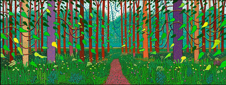 The Arrival of Spring in Woldgate, East Yorkshire in 2011 (twenty eleven), David Hockney. © David Hockney, Photo Credit: Richard Schmidt, Centre Pompidou, Paris. Musée national d'art moderne – Centre de création industrielle
