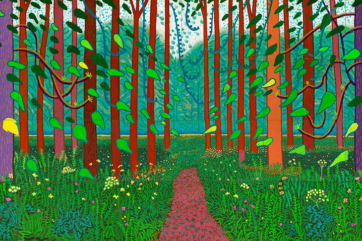 The Arrival of Spring in Woldgate, East Yorkshire in 2011 (twenty eleven) (2011), David Hockney.