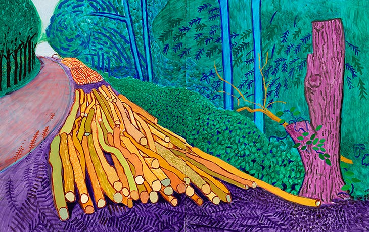 More Felled Trees on Woldgate (2008), David Hockney. © David Hockney, Photo Credit: Richard Schmidt