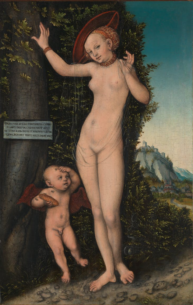 Venus and Cupid, Lucas Cranach the Elder