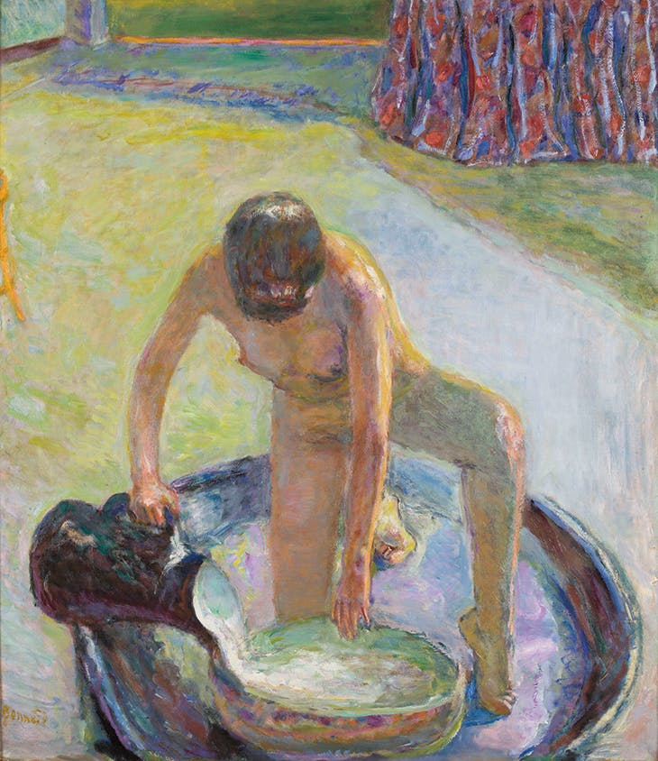 Nude Crouching in the Tub (1918), Pierre Bonnard.