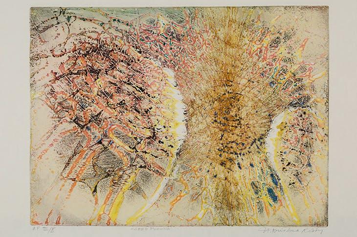 Seed Pushing (1961), Krishna Reddy.
