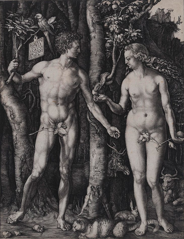Adam and Eve (1504), Albrecht Dürer. Los Angeles County Museum of Art