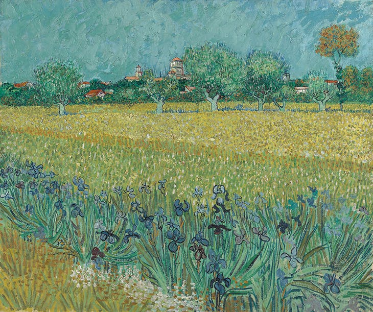 Field with Irises near Arles (1888), Vincent van Gogh. Van Gogh Museum, Amsterdam (Vincent van Gogh Foundation)