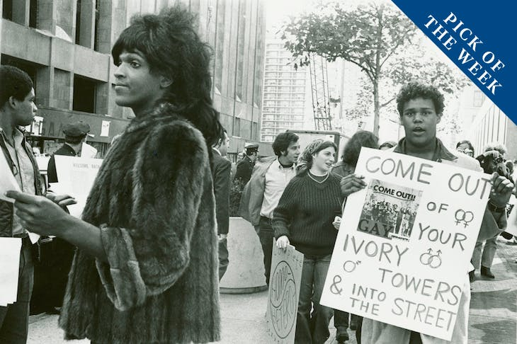 Untitled (Marsha P. Johnson Hands Out Flyers For Support of Gay Students at N.Y.U.) (c. 1970), Diana Davies.