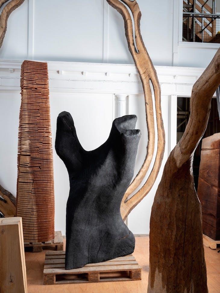 Torso (2006), David Nash, photographed in 2018 at Nash's studio, Capel Rhiw, in Blaenau Ffestiniog.