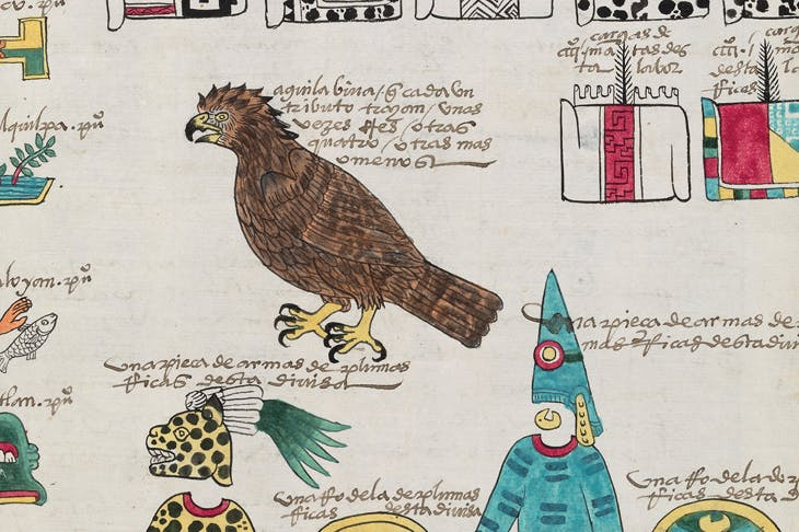 Detail from a page of the Codex Mexicana, c. 1541, created as a handbook for Charles V, Holy Roman Emperor and king of Spain, providing him with information about his new province. The writing is in the Mexica language, Nahuatl, and Spanish. Image courtesy Bodleian Libraries, University of Oxford