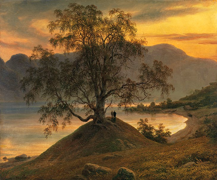 Old Birch Tree at the Sognefjord (1839), Thomas Fearnley. National Museum of Art, Architecture and Design, Oslo