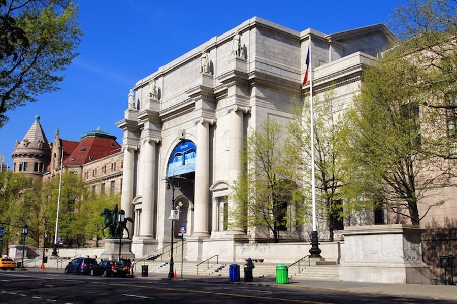 The American Museum of Natural History, New York.