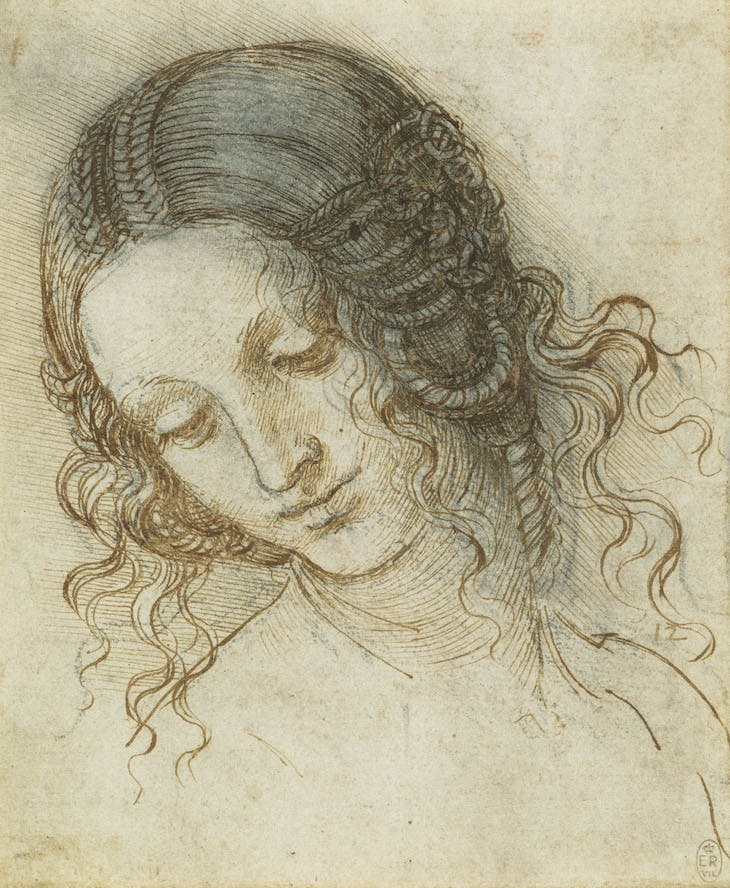The head of Leda (c. 1505–08), Leonardo da Vinci.