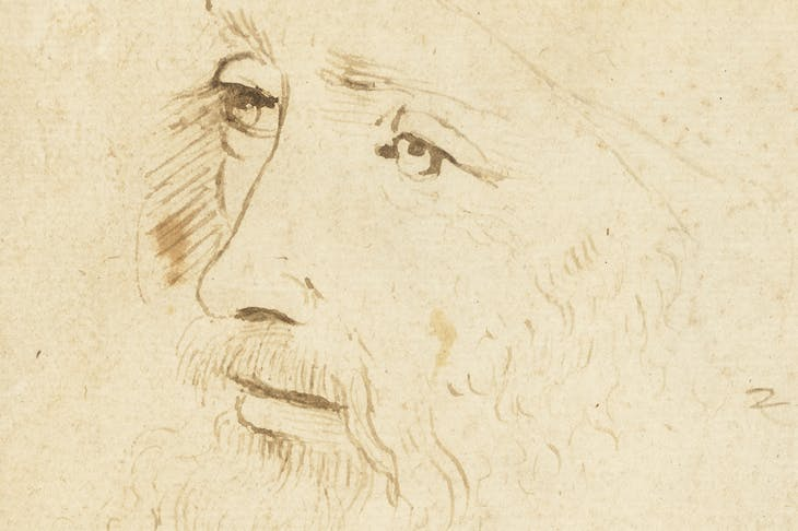 Detail of a sketch of Leonardo da Vinci (c. 1517–18), by an assistant of Leonardo, Royal Collection Trust/© Her Majesty Queen Elizabeth II 2019