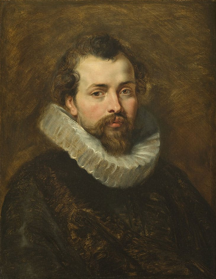 Portrait of Philip Rubens (c. 1610–11), Peter Paul Rubens. Detroit Institute Of Art.