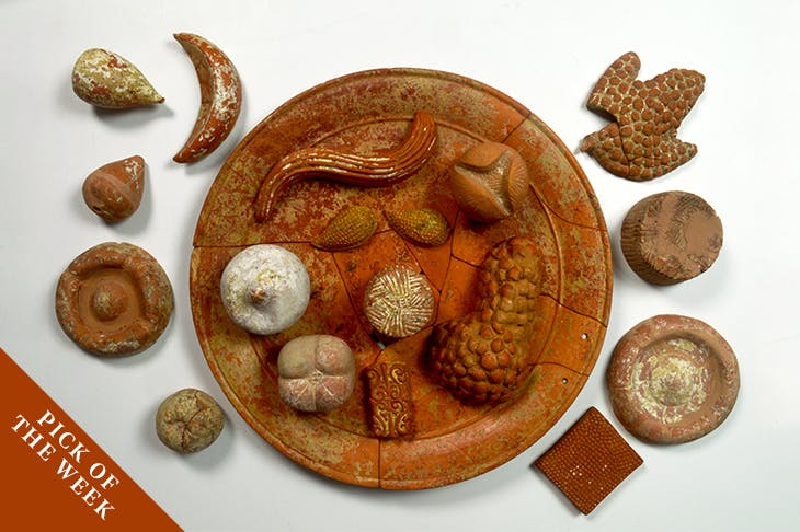 Terracotta votive food: pomegranates (open and closed); grapes; figs; almonds; cheeses; focaccia; honeycomb; mold; long bread (360 BC), Agropoli. Parco Archeologico Di Paestum