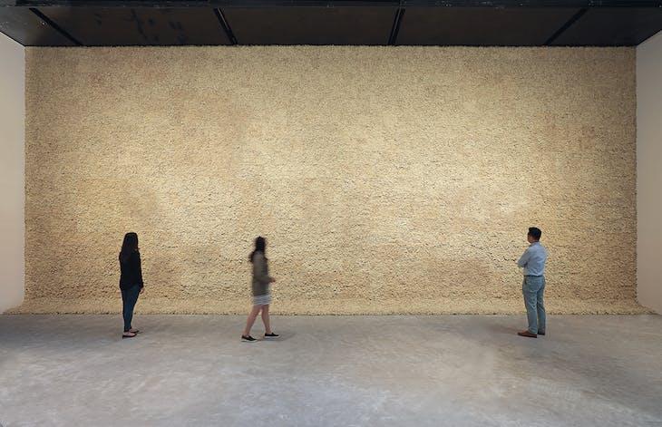 Moss wall (1994), Olafur Eliasson.