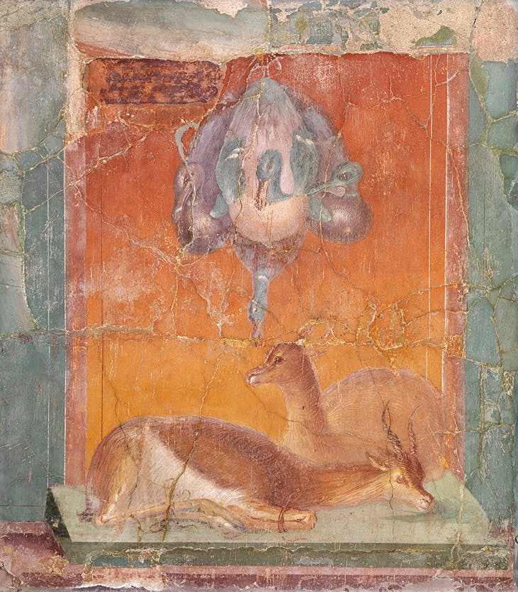 Fresco with ducks and deer (c. 40 BC), Roman.