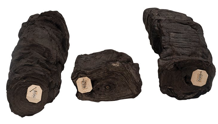 Three carbonised scrolls (2nd century BC–1st century AD), recovered from the Villa dei Papiri, Herculaneum, between 1752–54. Biblioteca Nazionale di Napoli.