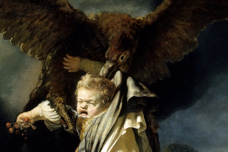 The Abduction of Ganymede (detail; 1635), Rembrandt.