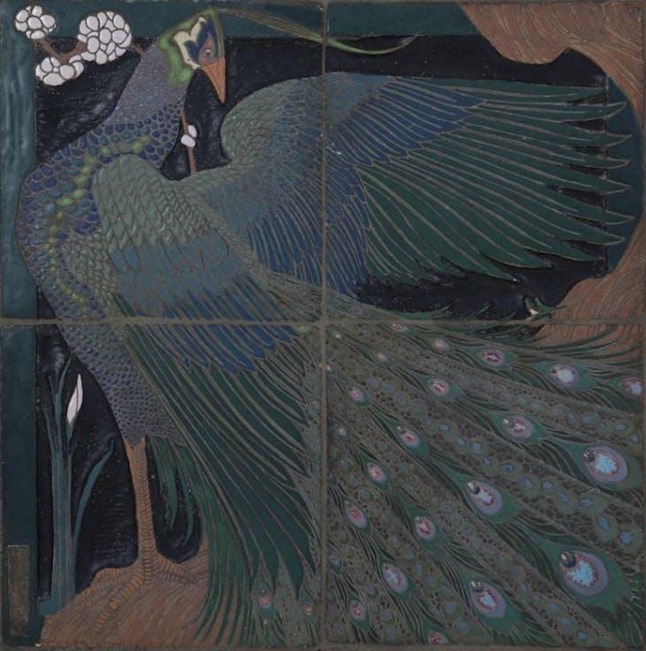 Peacock Four-Tile Panel (1910), Frederick Hurten Rhead.
