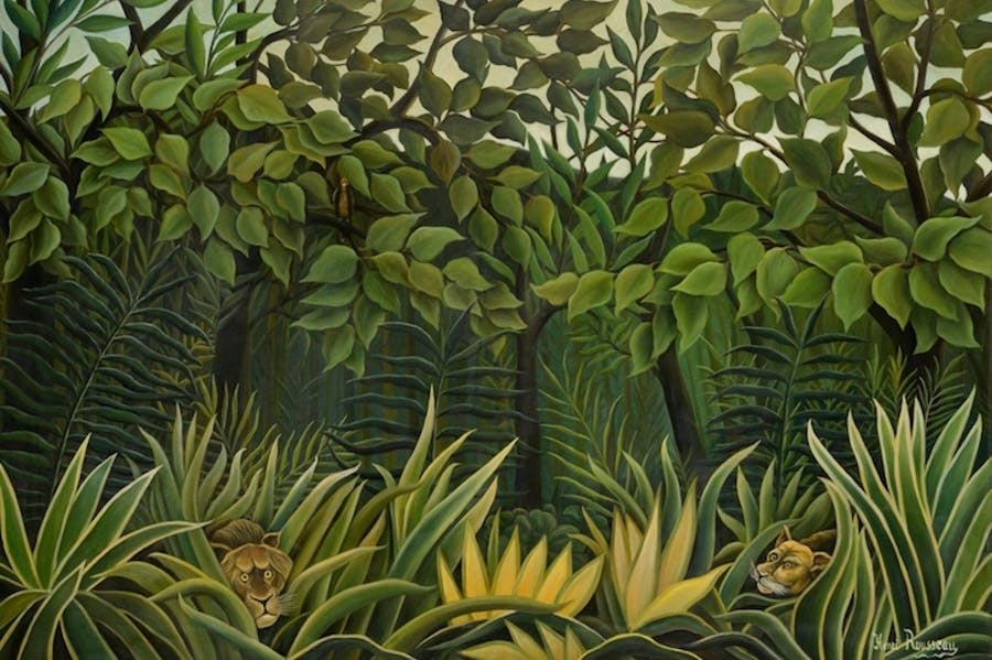 Two Lions on the Look-out in the Jungle (1909–10), Henri Rousseau