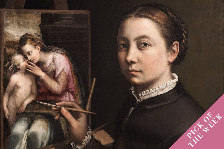 Self-Portrait at the Spinet (detail; c. 1556–57), Sofonisba Anguissola.