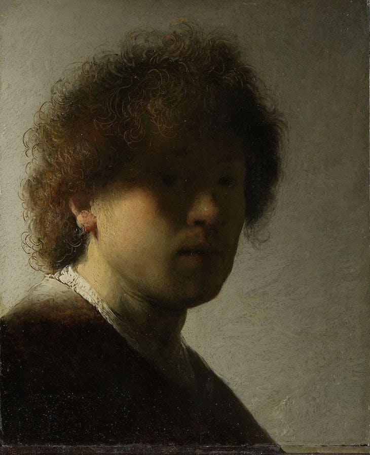 Self-Portrait (1628), Rembrandt van Rijn.