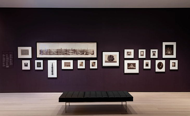 Installation view of Early Photography and Film (gallery 502) at the Museum of Modern Art, New York.