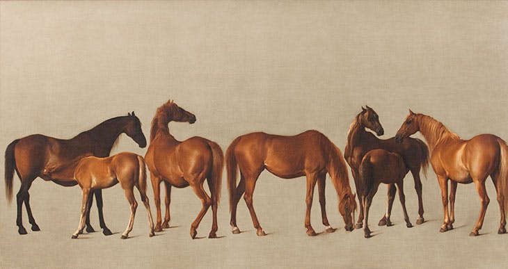 Mares and Foals with an Unfigured Background (1762), George Stubbs
