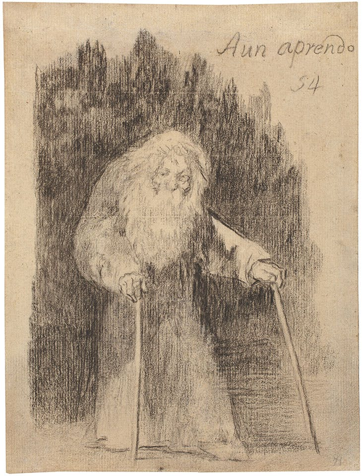 I Am Still Learning (1824–28), Francisco de Goya. Museo Nacional del Prado, Madrid