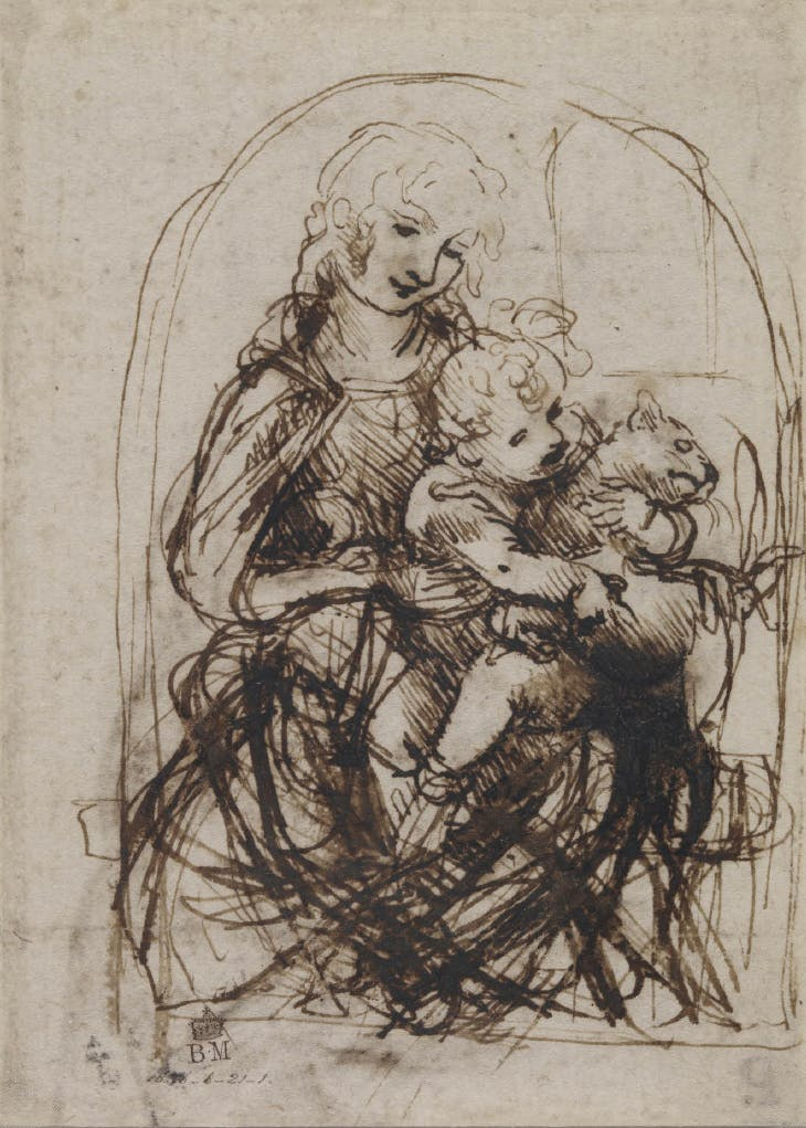The Virgin and Christ Child (c. 1478–81), Leonardo da Vinci.with a Cat