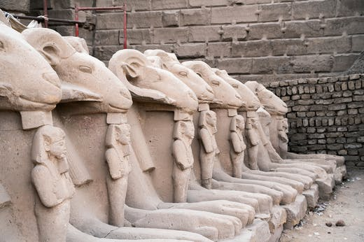 Sandstone ram-headed sphinxes (reign of Ramesses II; c. 1250 BC), from the first court in the Temple of Karnak in modern Luxor. Four of these sphinxes have now been taken to Cairo (photo: January 2020). Photo: © Ivar Sviestins
