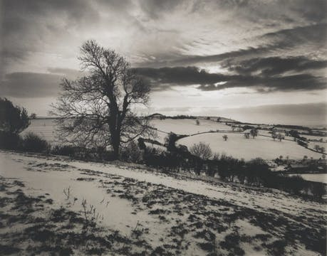 Batcombe Vale (1992–93; printed in 2019), Don McCullin. Courtesy the artist and Hauser & Wirth; © Don McCullin