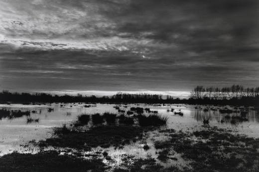 The Somerset levels at dusk (1998), Don McCullin. Courtesy the artist and Hauser & Wirth; © Don McCullin
