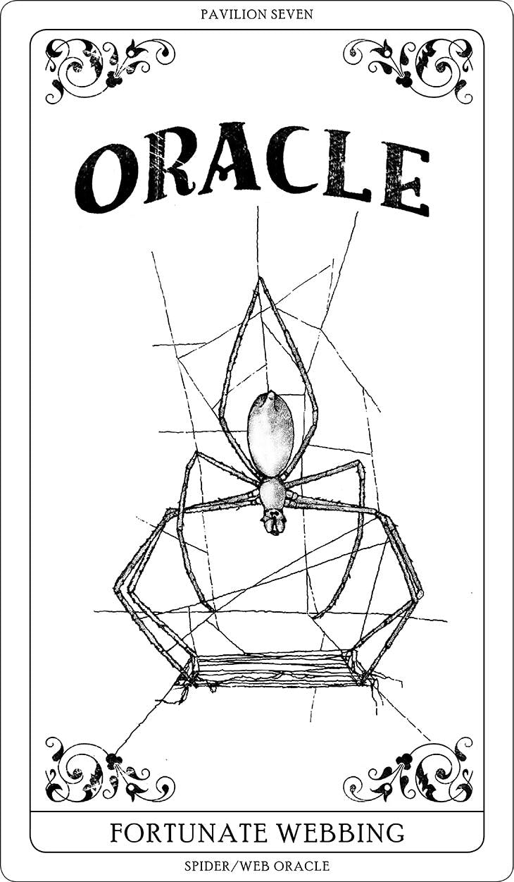 One of Tomás Saraceno's Arachnomancy Cards (2019). Courtesy the artist; © Studio Tomás Saraceno, 2019