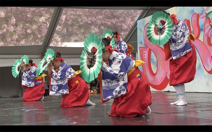 The Japanese Folk Dance Institute of New York performing at Brooklyn Botanic Garden, New York. Screenshot of film by Rich Sullivan (edited by Michael Stewart)