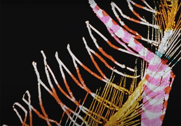 Begone Dull Care (still; 1949), Evelyn Lambart and Norman McLaren (with The Oscar Peterson Trio)