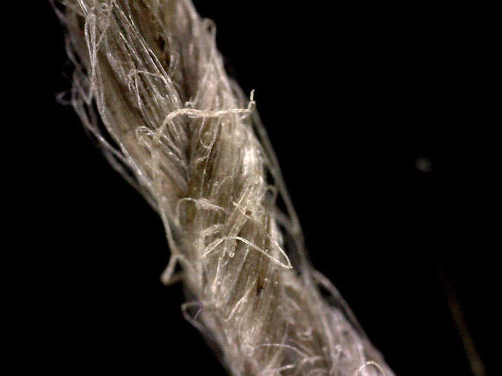 Close-up of modern flax cordage showing twisted fibre construction.
