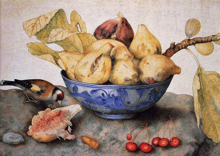 Chinese Cup with Figs, Cherries and Goldfinch (c. 1655–62), Giovanna Garzoni. Gallerie degli Uffizi, Florence