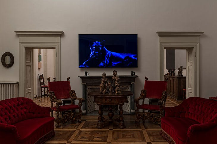 Installation view of Robert Wilson's Ivory: Blank Panther video portrait.