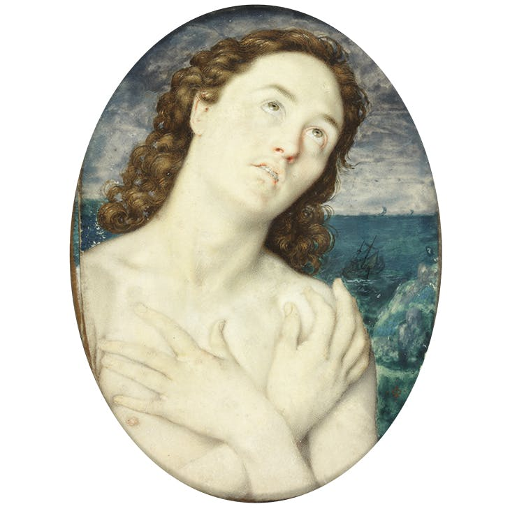 Unknown Melancholy Young Man, c. 1595–1610, Isaac Oliver. The Portland Collection, Harley Gallery, Welbeck Estate, Nottinghamshire.