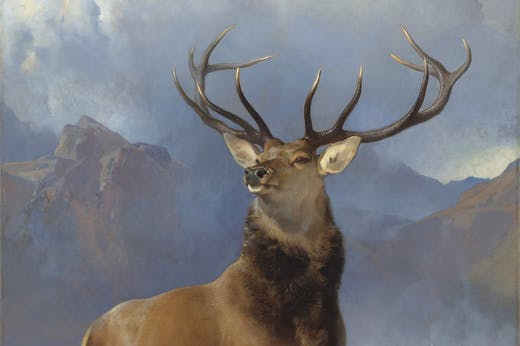 The Monarch of the Glen (detail; c. 1851), Edwin Landseer