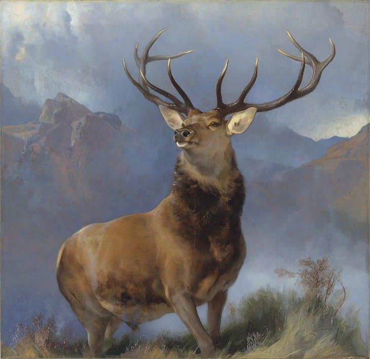 The Monarch of the Glen (1851), Edwin Landseer.